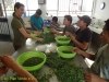 Vorbereitung-Moringaverarbeitung-Plan-Verde-e.V.