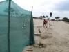 Windschutz Baumschule Mariposa
