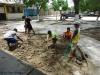 Bodenauflockerung-Plan-Verde