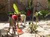 Gartenpflege-Plan-Verde-e.V.