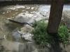 Wasser marsch ...  :-)