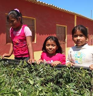 Mit 250 Neembäumen nach La Islilla